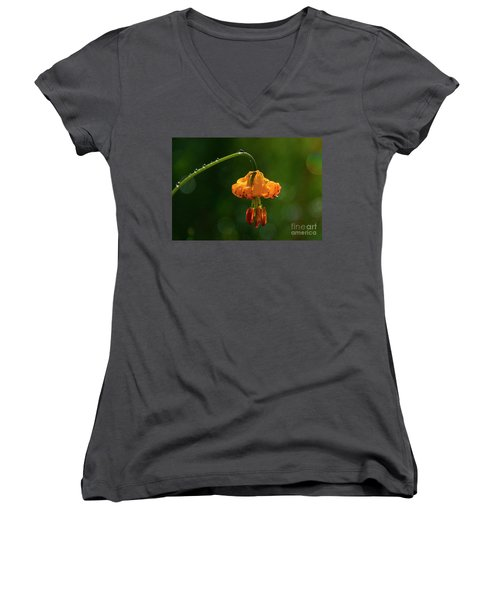 Columbia Lily With Dew Women's V-Neck T-Shirt