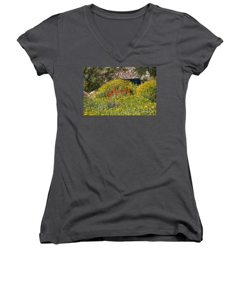 Come Sit Awhile Women's V-Neck T-Shirt (Junior Cut) by Anne Rodkin