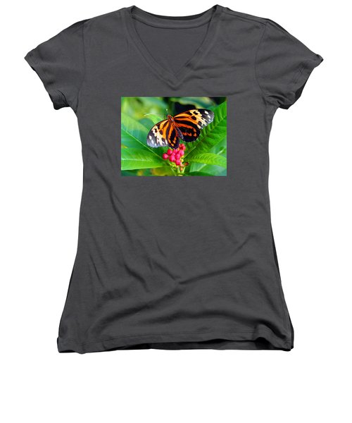 Common Tiger Glassywing Butterfly Women's V-Neck T-Shirt