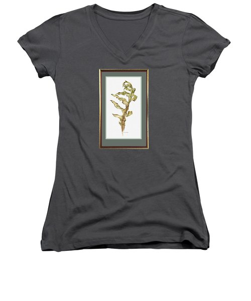 Compass Plant, Fall Women's V-Neck T-Shirt (Junior Cut) by Catherine Twomey