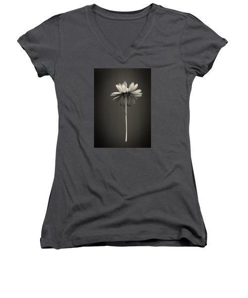 Cone Flower 7 Women's V-Neck (Athletic Fit)