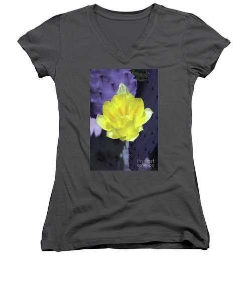 Contrast Women's V-Neck T-Shirt