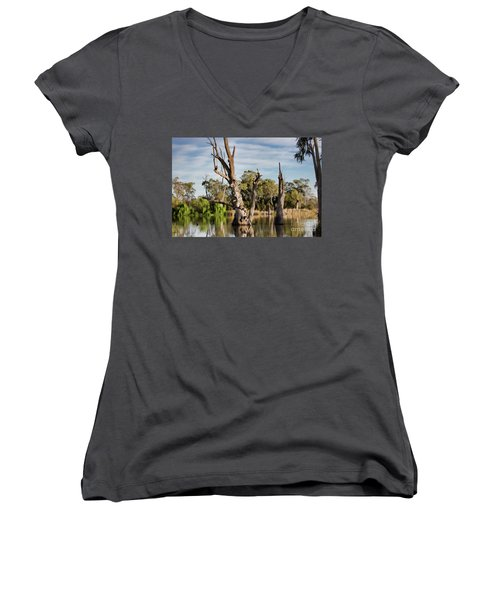 Women's V-Neck T-Shirt (Junior Cut) featuring the photograph Contrasted by Douglas Barnard