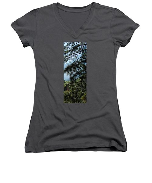 4 Of 4 Controlled Burn Of Yosemite Section Women's V-Neck
