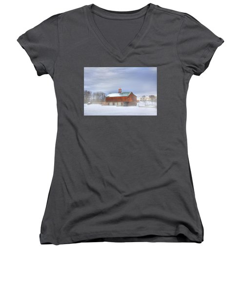 Copper Cupola Women's V-Neck T-Shirt (Junior Cut) by Sharon Batdorf