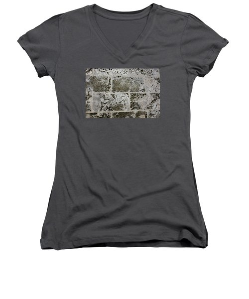 Coral Wall 205 Women's V-Neck T-Shirt
