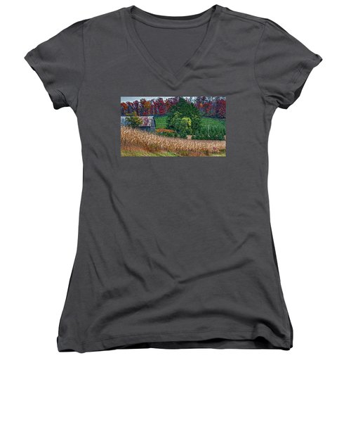 Corn And Ginseng On Poverty Hill Women's V-Neck (Athletic Fit)
