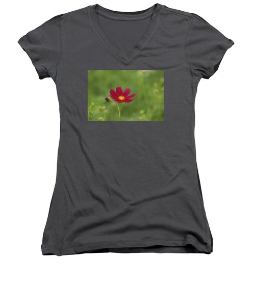 Cosmos Women's V-Neck T-Shirt (Junior Cut) by Hyuntae Kim