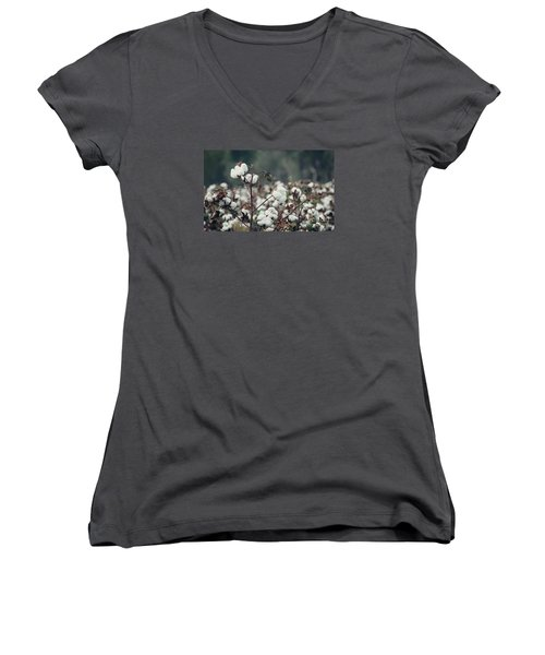 Cotton Field 5 Women's V-Neck T-Shirt (Junior Cut) by Andrea Anderegg