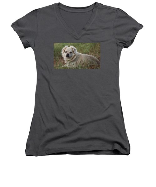 Cotton In The Grass Women's V-Neck