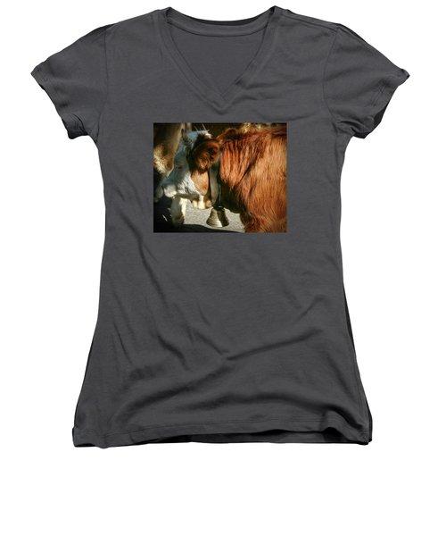Cow Beautiful - Women's V-Neck T-Shirt