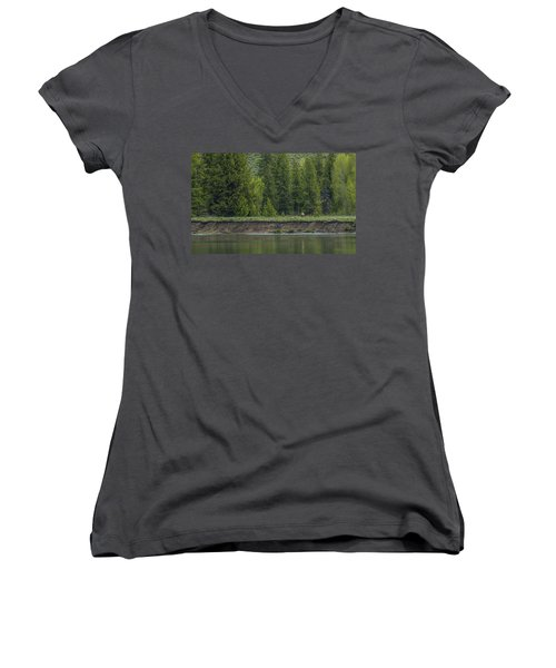 Cow Elk On The Riverbank Women's V-Neck T-Shirt