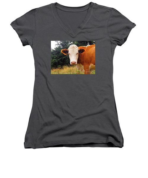 Women's V-Neck T-Shirt (Junior Cut) featuring the photograph Cow In Pasture by MGL Meiklejohn Graphics Licensing