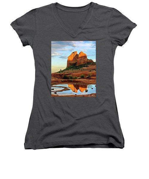 Cowpie 07-075 Women's V-Neck T-Shirt (Junior Cut) by Scott McAllister