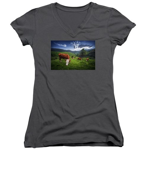 Cows Women's V-Neck T-Shirt (Junior Cut) by Bess Hamiti