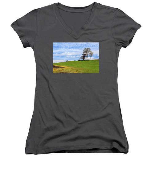 Women's V-Neck T-Shirt (Junior Cut) featuring the photograph Cows On A Spring Hill by James Eddy