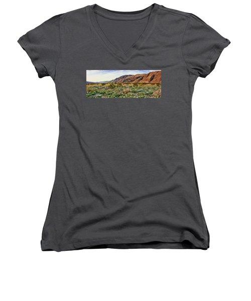 Coyote Canyon Sweet Light Women's V-Neck T-Shirt (Junior Cut)