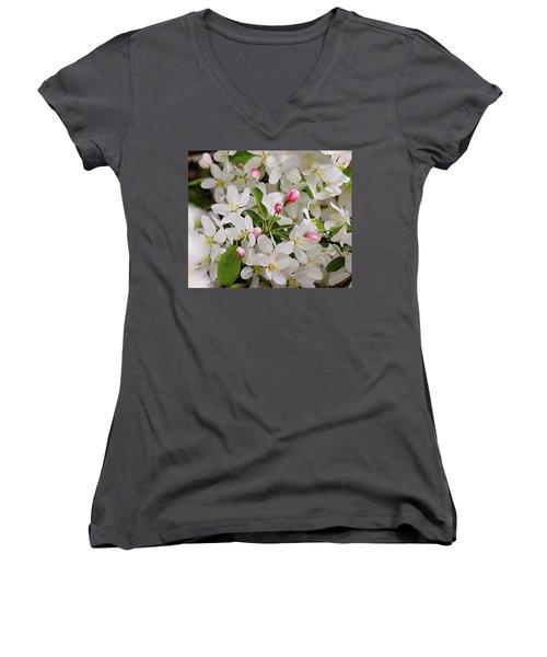 Crabapple Blossoms 5 Women's V-Neck