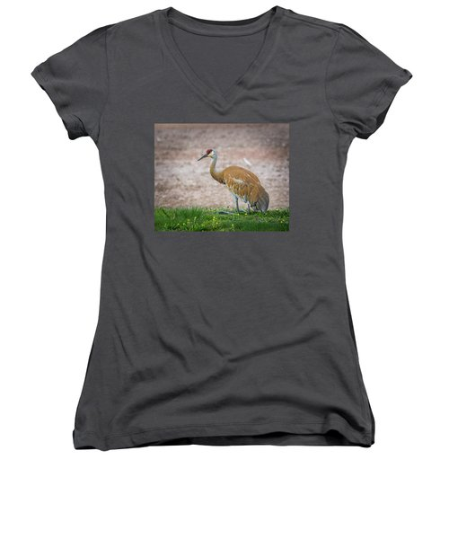 Women's V-Neck T-Shirt featuring the photograph Crane Down by Bill Pevlor