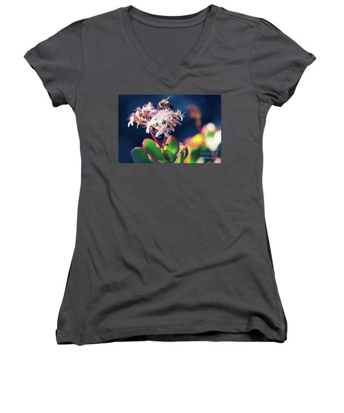 Women's V-Neck T-Shirt (Junior Cut) featuring the photograph Crassula Ovata Flowers And Honey Bee by Sharon Mau