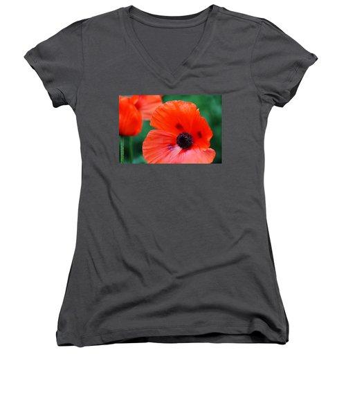 Crepe Paper Petals Women's V-Neck T-Shirt (Junior Cut) by Debbie Oppermann