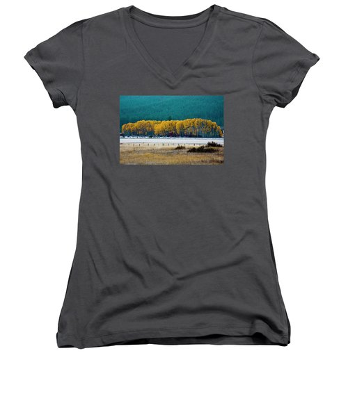 Crisp Aspen Morning Women's V-Neck (Athletic Fit)