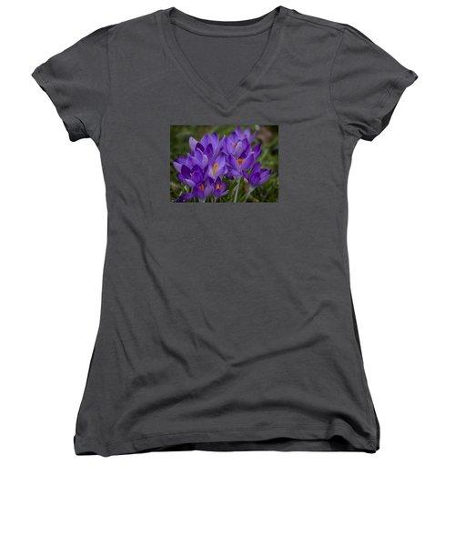 Crocus Cluster Women's V-Neck T-Shirt (Junior Cut) by Shirley Mitchell