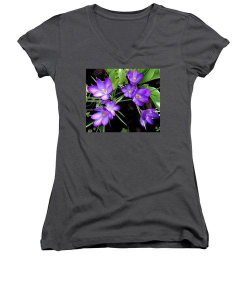 Crocus First To Bloom Women's V-Neck T-Shirt (Junior Cut) by Tara Hutton