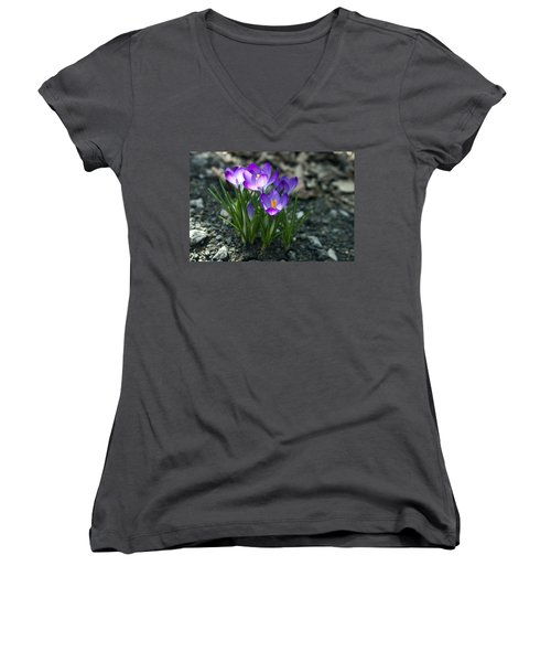 Women's V-Neck T-Shirt (Junior Cut) featuring the photograph Crocus In Bloom #2 by Jeff Severson