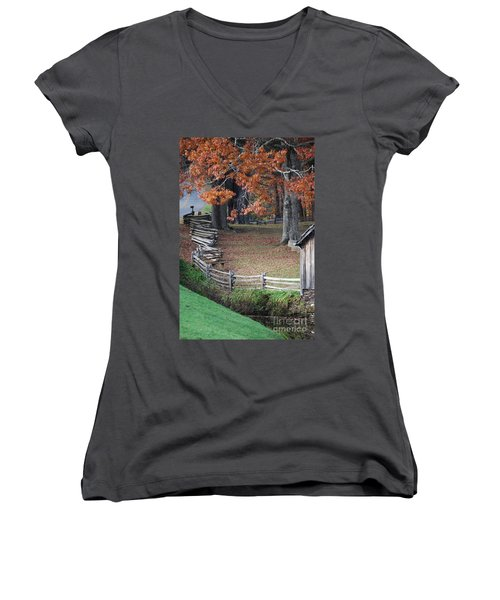Crooked Fence Women's V-Neck T-Shirt (Junior Cut) by Eric Liller