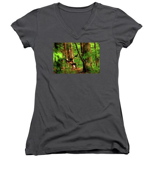 Crow On A Table Women's V-Neck T-Shirt (Junior Cut) by Andy Lawless