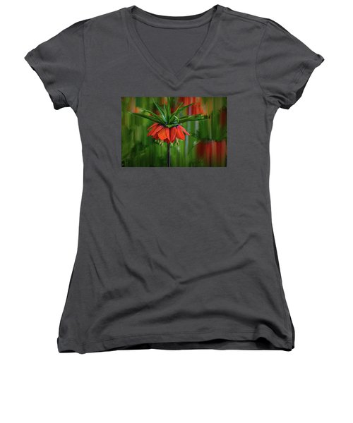 Crown-imperial Abstract #h5 Women's V-Neck