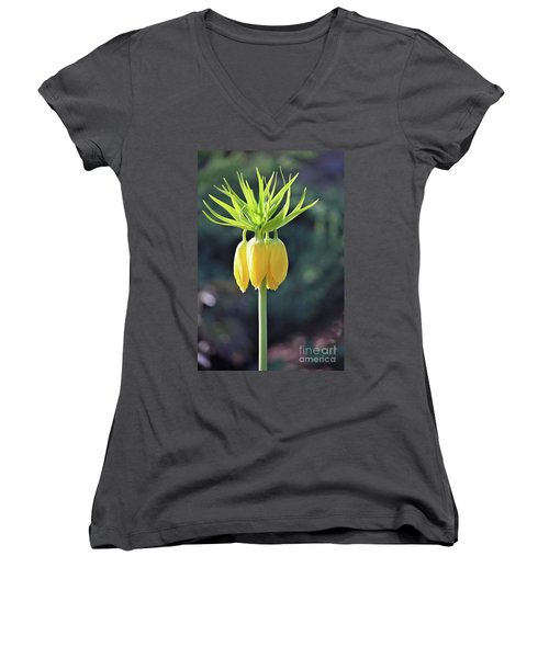 Crown Lily Women's V-Neck