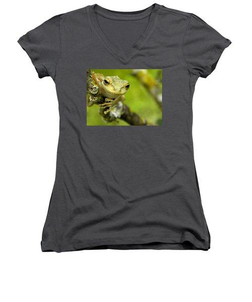 Cuban Tree Frog 000 Women's V-Neck T-Shirt (Junior Cut) by Chris Mercer