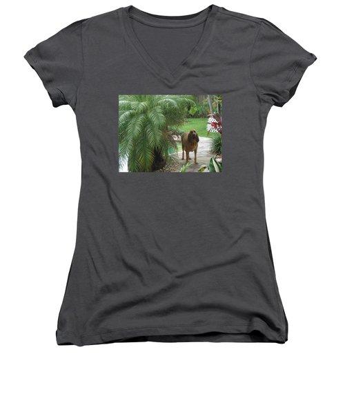 Cujo Hiding Women's V-Neck T-Shirt (Junior Cut) by Val Oconnor