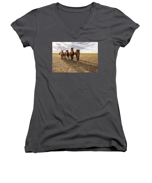 Women's V-Neck T-Shirt (Junior Cut) featuring the photograph Curious Horses by Hitendra SINKAR