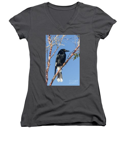 Currawong Women's V-Neck T-Shirt (Junior Cut) by Werner Padarin