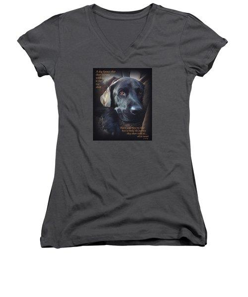 Custom Paw Print Midnight Oh So Sweet Women's V-Neck T-Shirt
