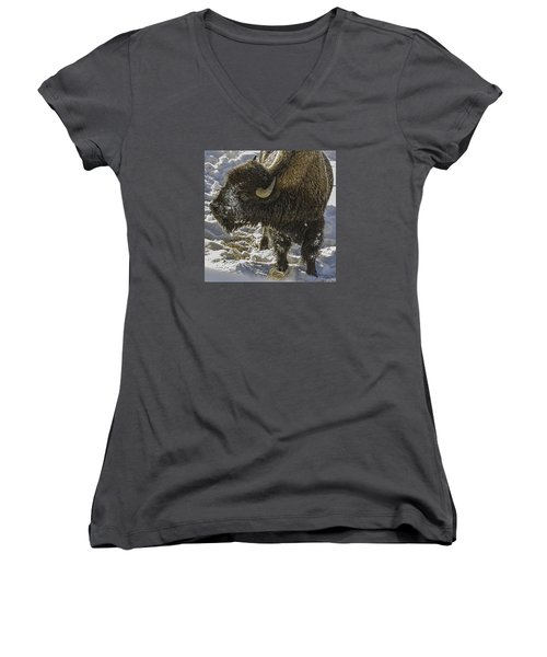 Cute Women's V-Neck (Athletic Fit)