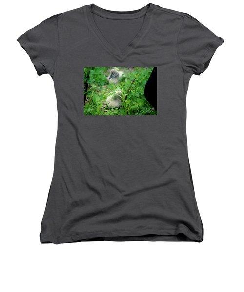 Cygnets V Women's V-Neck T-Shirt