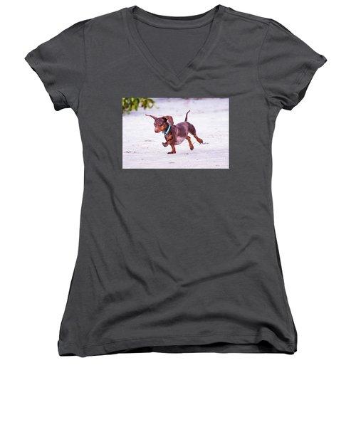 Dachshund On Beach Women's V-Neck T-Shirt (Junior Cut) by Stephanie Hayes