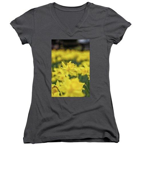 Daffodil Women's V-Neck