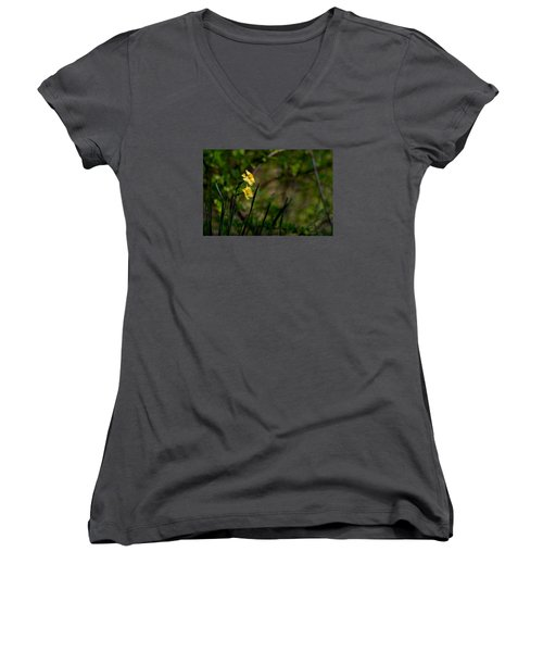 Daffodils Among The Green Women's V-Neck (Athletic Fit)
