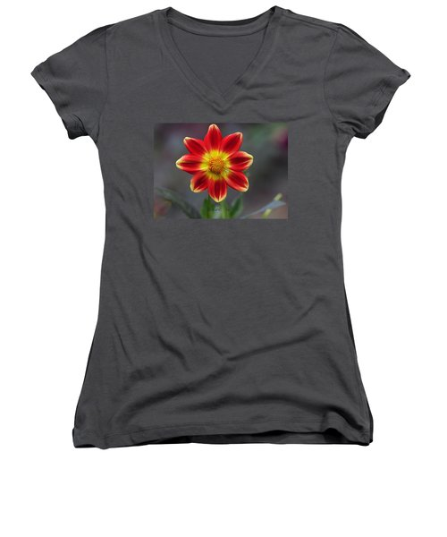 Dahlia Women's V-Neck T-Shirt (Junior Cut) by Diane Giurco