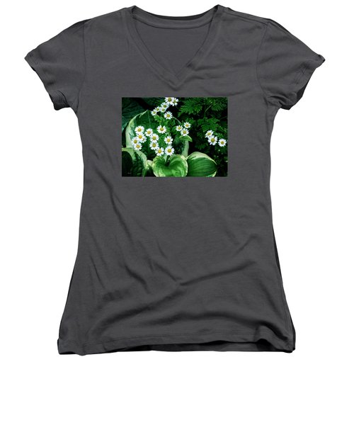 Daisies And Hosta In Colour Women's V-Neck T-Shirt