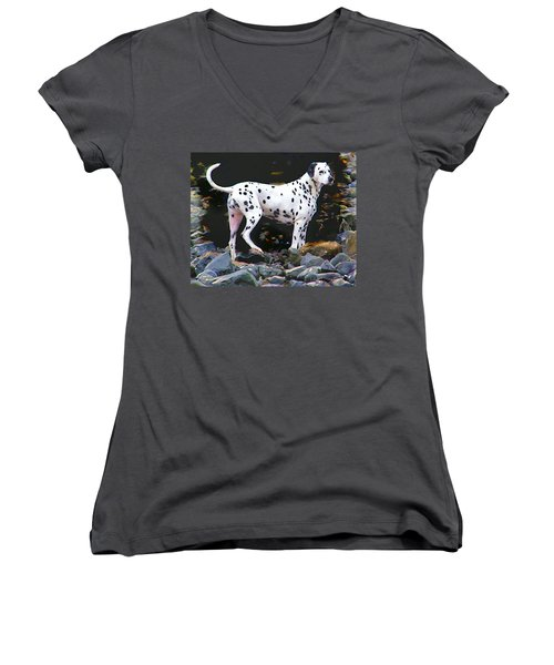 Women's V-Neck T-Shirt (Junior Cut) featuring the photograph Dalmatian On The Rocks by Wendy McKennon