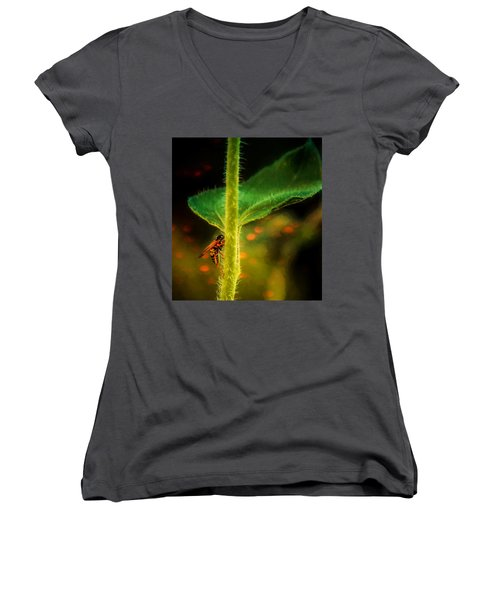 Dance Of The Wasp Women's V-Neck