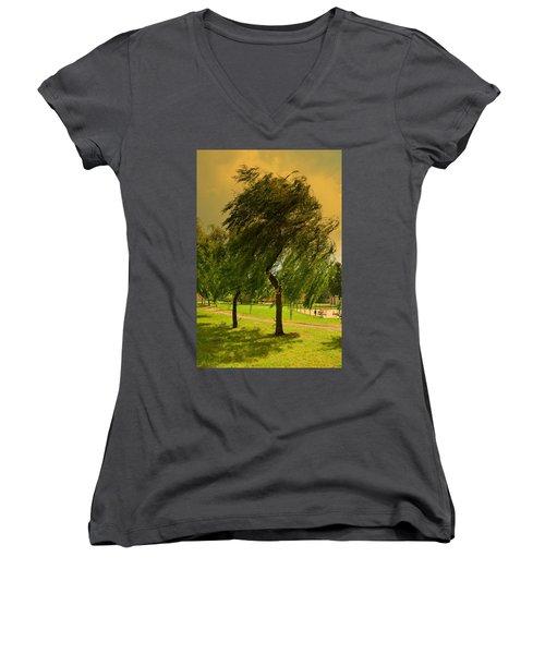 Dancing Willow Women's V-Neck T-Shirt