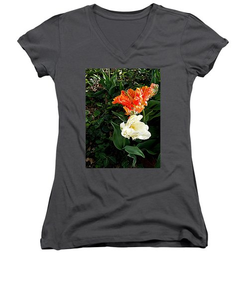 Women's V-Neck T-Shirt (Junior Cut) featuring the photograph Dancing With The Stars by Nancy Kane Chapman