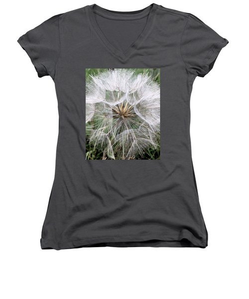 Dandelion Seed Head  Women's V-Neck T-Shirt (Junior Cut) by Kathy Spall